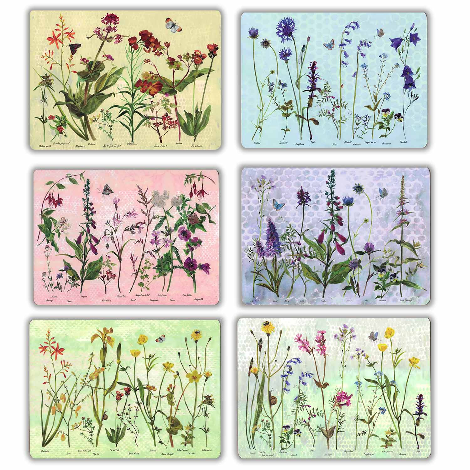 Wildflower Placemats (Set of 6) - Annabel Langrish
